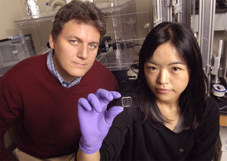 Andre Levchenko, assistant professor of biomedical engineering, and Hojung Cho, a biomedical engineering doctoral student, were part of a team that uncovered new information about how bacteria form antibiotic-resistant communities called biofilms.
