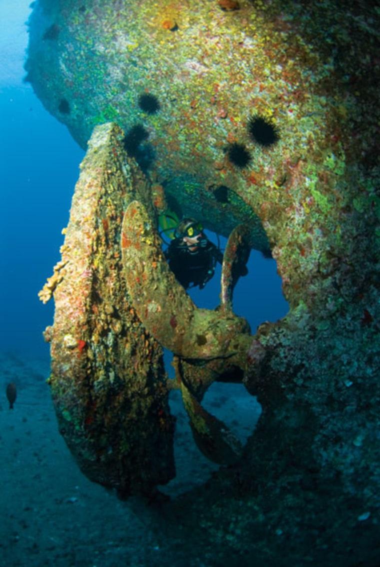 Image: Scuba diving