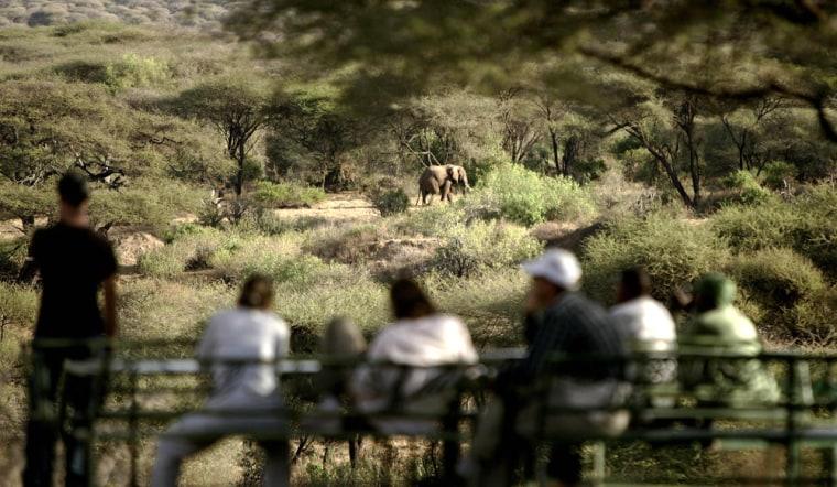 Image: Tourists observe an elephant at Lake Manyara's national park