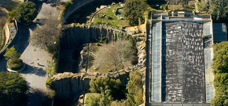 Image: The tiger enclosure at the San Francisco Zoo sits empty