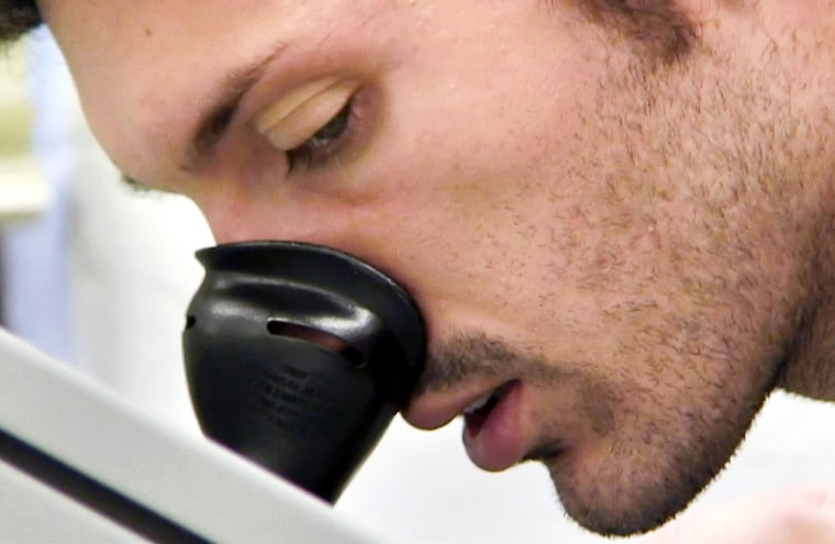 Image: Luca Magnani breathes into a olfactometer