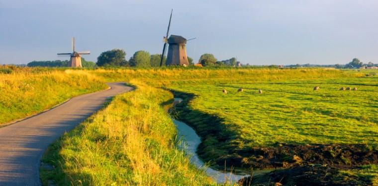 Image: Windmills