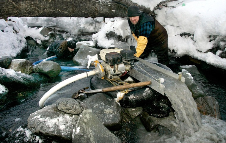 Marty Telgenhoff, right, unplugs a suction dredge as Vince Lombardo works under a rock as they look for gold in Crow Creek in Girdwood, Alaska. The number of small scale miners is increasing as gold prices spike to an the all-time high of more than $900 an ounce for gold.