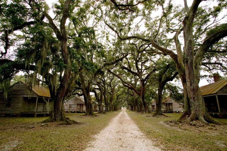 Image: Evergreen Plantation