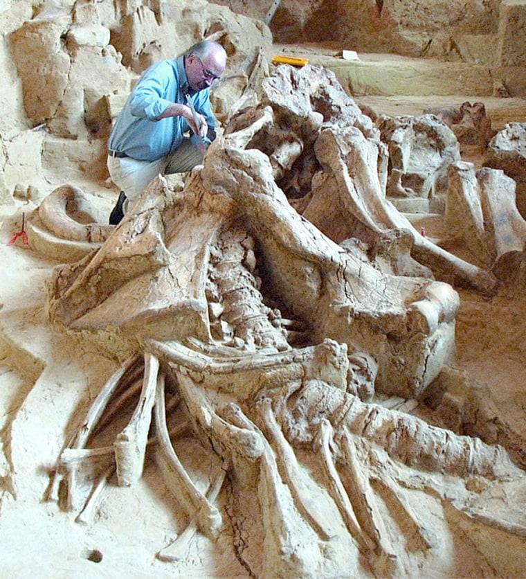 Image: Mammoth Graveyard, Hot Springs, South Dakota