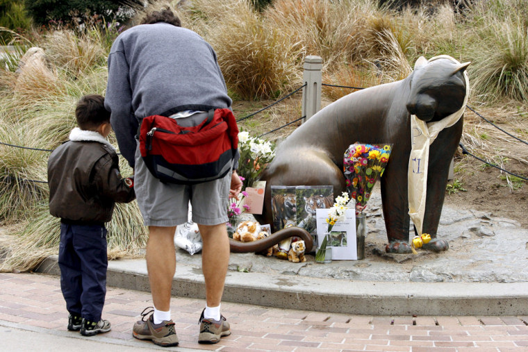 Image: San Francisco Zoo re-opens after tiger attack on Christmas