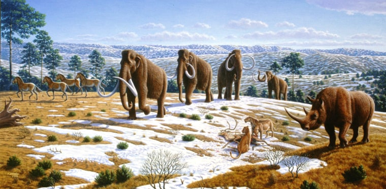 Image: Wooly mammoths