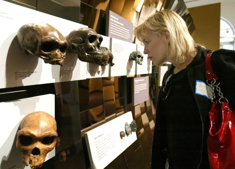 Image: Bonnie Squires looks at evolution exhibit