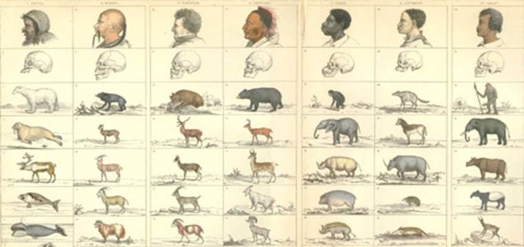 Image: Drawings of people and animals