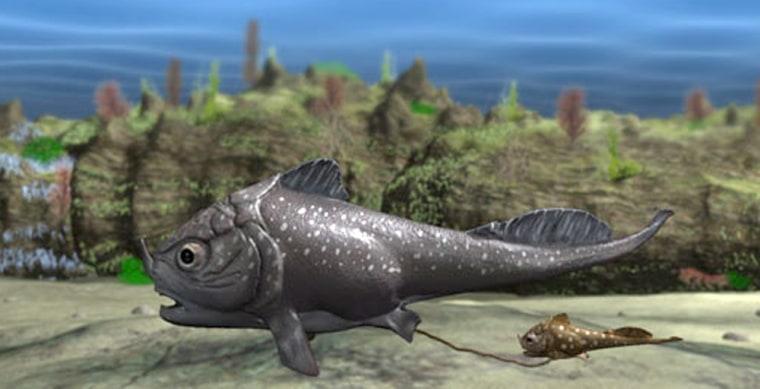 Image: Armored fish