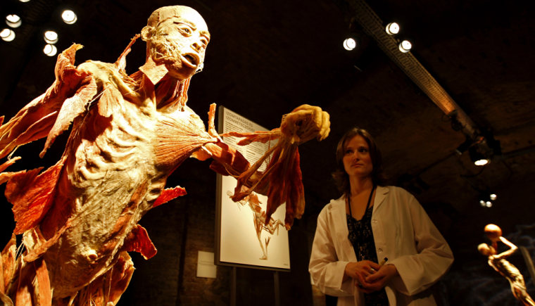 Image: Visitor stands behind preserved human body at exhibition