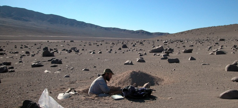 Thisphoto fromthe U.S. Geological Survey shows researcher Jay Quade in a test pit in Chile's Atacama desert, where bizarre microbes exist in this extreme climate. NASA's Phoenix lander is looking for conditions near Mars' north pole that could support primitive life similar to extreme life on Earth.