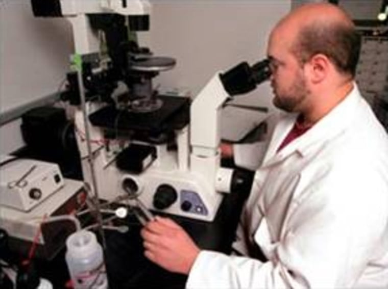 ACT research associate Mark Maserati uses one of the most advanced microscopes in the U.S. to magnify an egg many times over so he can remove its genetic material — the first step in therapeutic cloning — at the company's Worcester, Mass., facility.
