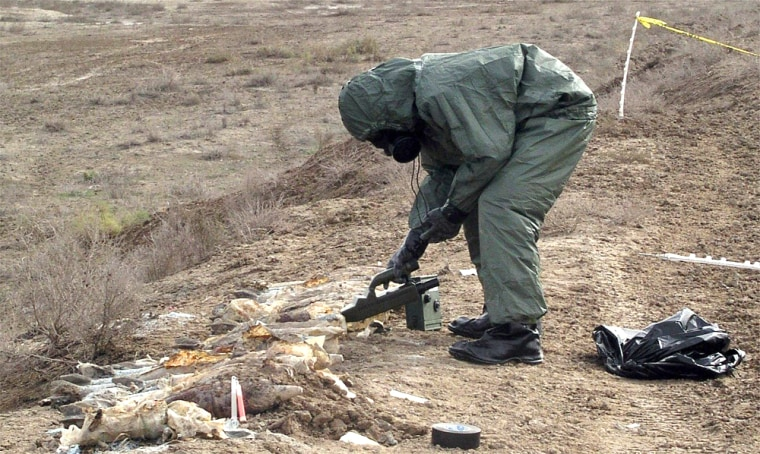 This picture released by the Danish military on Saturday shows troops uncovering a cache of shells buried in the Iraqi desert, north of Basra. Initial tests show they contain a liquid blister agent.