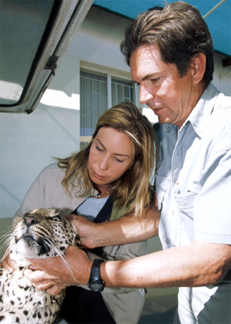 Veterinary pioneer Dr. Ulf Tubbesing has devoted his life to treating some of Africa's wildest and most unpredictable animals. National Geographic Ultimate Explorer correspondent Mireya Mayor joins Dr. Tubbesing at his clinic in Namibia as he races against time to save a family of leopards stricken with a mysterious and deadly brain disorder.