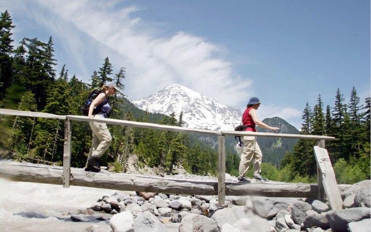 Image: Mt. Rainier National Park