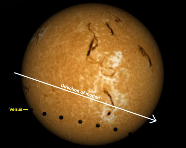 This chart of the sun's disk shows how the June 8 transit will unfold as seen from New York City. The black disks indicate Venus' position at various times during the transit.