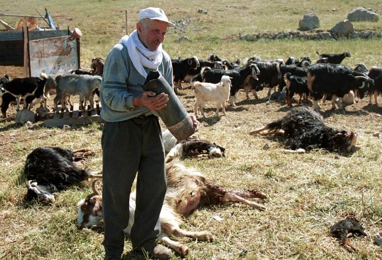 Lebanese shepherd Kamel Nasser holds part of an Israeli shellthat hit his farm and killed some of his sheep near the southern Lebanese village of Kfar Chouba onFriday.