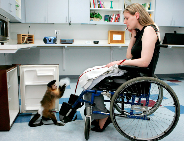 MONKEY RETRIEVES BOTTLE FROM REFRIGERATOR FOR TRAINERS IN WHEELCHAIR AT MONKEY COLLEGE