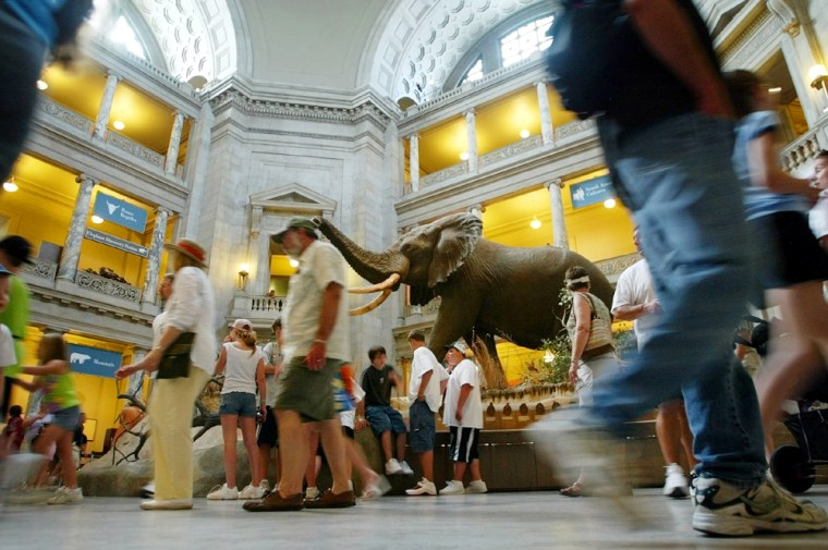 Vistors walk past a giant elephant named Henry in the rotunda of the National Museum of Natural History on Tuesday.