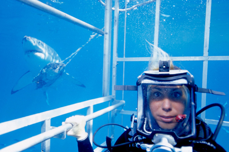 """""""National Geographic Ultimate Explorer"""" correspondent Mireya Mayor ventures into dangerous waters with acclaimed underwater cinematographer Bob Cranston as they attempt to use sound waves to attract one of the world's most fearsome predators — the great white shark."""