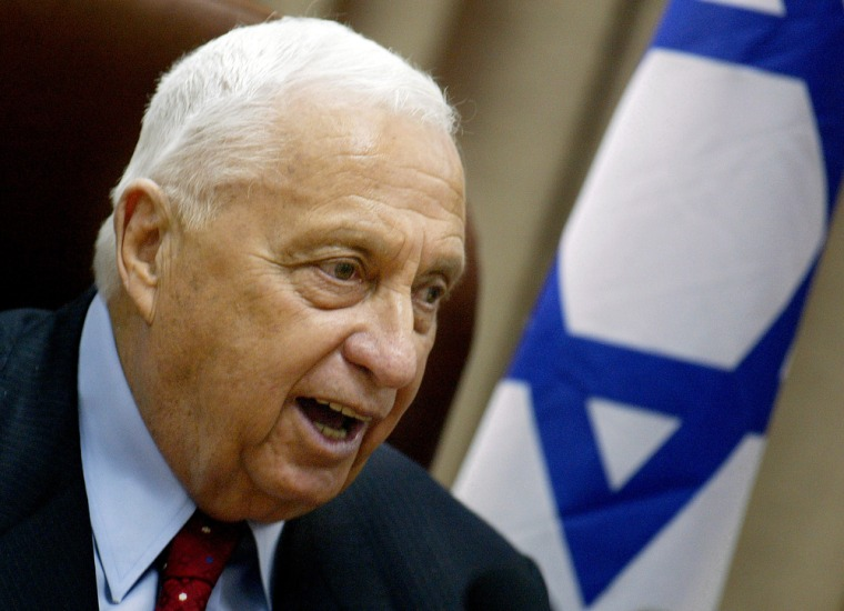 Israeli Prime Minister Ariel Sharon, who has been in a coma since January, is seen in July 2004.