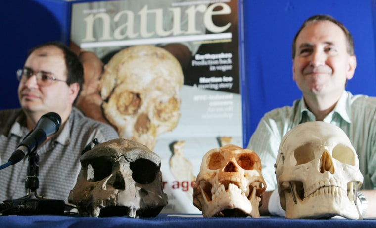 Henry Gee of Nature magazine and Professor Chris Stringer of London's Natural History Museum, discuss the findings at a news conference in London Wednesday. In front of them, from left, are a Homo erectus skull, a cast of the Homo floresiensis skull and a cast of a modern Homo sapiens skull.