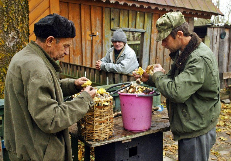 """Ivan Muzychenko, left, and his son Alexander go through mushrooms gathered in a forestwithin the Chernobyl """"exclusion zone"""" created by Belarus after the 1986 accident."""