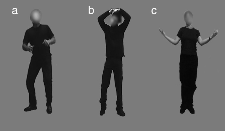 In an experiment, scientists monitored their subjects' brain activity while they were shown pictures portraying body language that corresponded to a variety of emotions: (a) fearful, (b) neutral, and (c) happy.