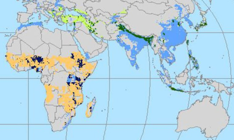 A section of a global map shows areas ofhigh mortality risk from natural disasters in Africa and southern Europe and Asia. Orange indicates drought risk; blue indicates risk from floods and storms; green indicates geophysical risks such as earthquakes, volcanoes and landslides; black areas face a combination of risks. Click on links in the story below to see full maps.