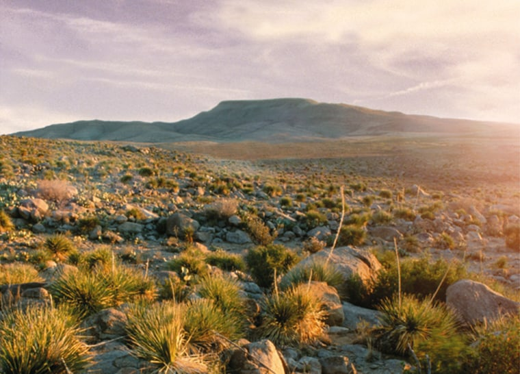 Part of the Otero Mesa, a large desert grassland in New Mexico, is seen in this photo released by the New Mexico Wilderness Alliance, which opposes the federal government's drilling plan for the area.