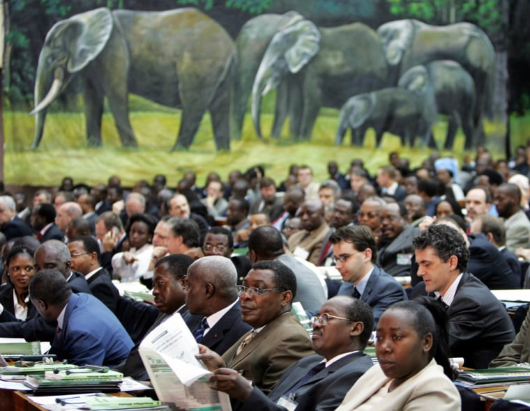 Delegations attend the opening session of the second Central Africa heads of state summit on conservation and sustainable management of forests ecosystems in Brazzaville