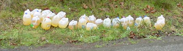 A road crew in Washington state collected these jugs of urine. In one year, a single,small county in the state collected 2,666 jugs.