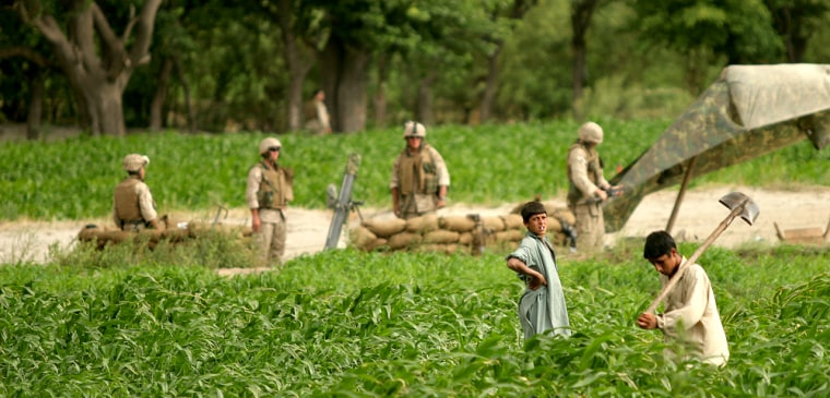 Afghan children work in a field next to a U.S. Marine mortar position in Kandagal village, Kunar province, in eastern Afghanistan.