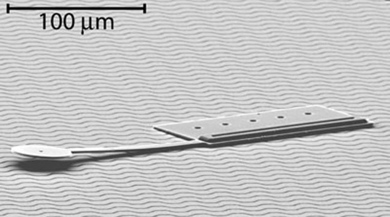 This tiny bot measures about 60 micrometers wide (about the width of a human hair) by 250 micrometers long, making it the smallest untethered, controllable microrobot ever.