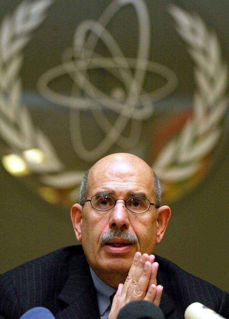 File photo of Nobel Peace prize winner Mohamed ElBaradei