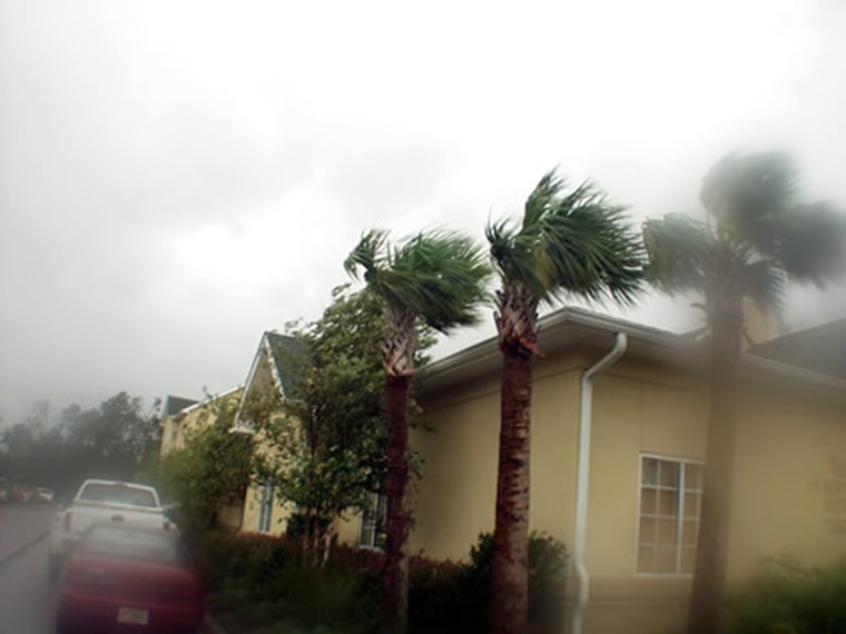 Strong winds and rain from Hurricane Katrina bend trees in Pensacola, Fla., on Aug. 29.