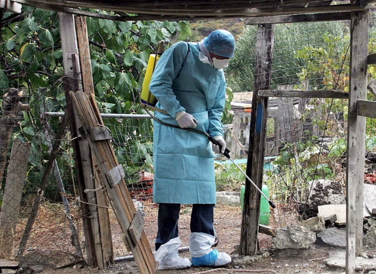 A veterinarian sprays disinfectant  at a