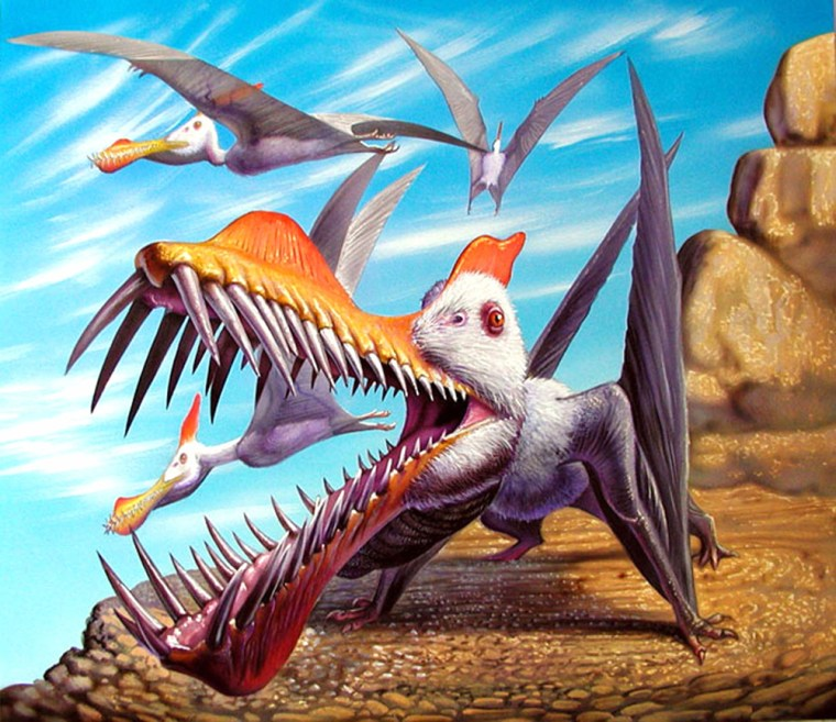 Handout image showing an artist's impression of a new species of flying pterosaur called Caulkicephalus trimicrodon