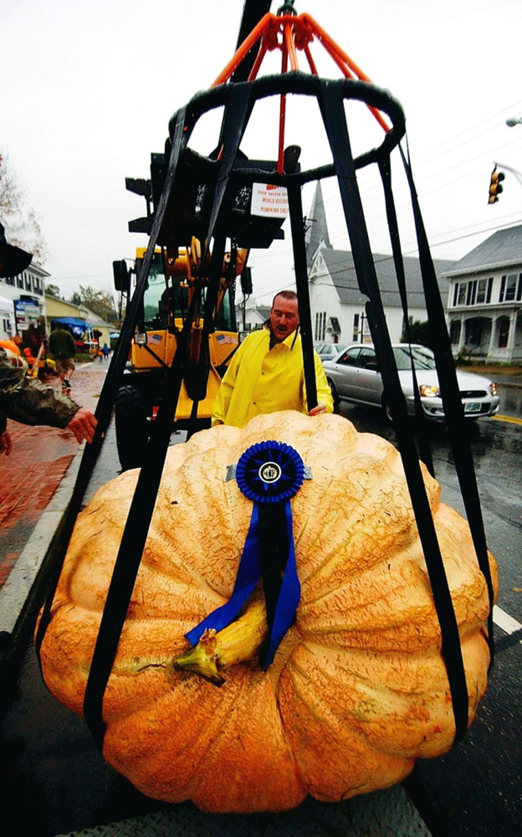 Jim Beauchemin's mammothpumpkinis moved back to its display after being weighed during Goffstown's Pumpkin Festival.