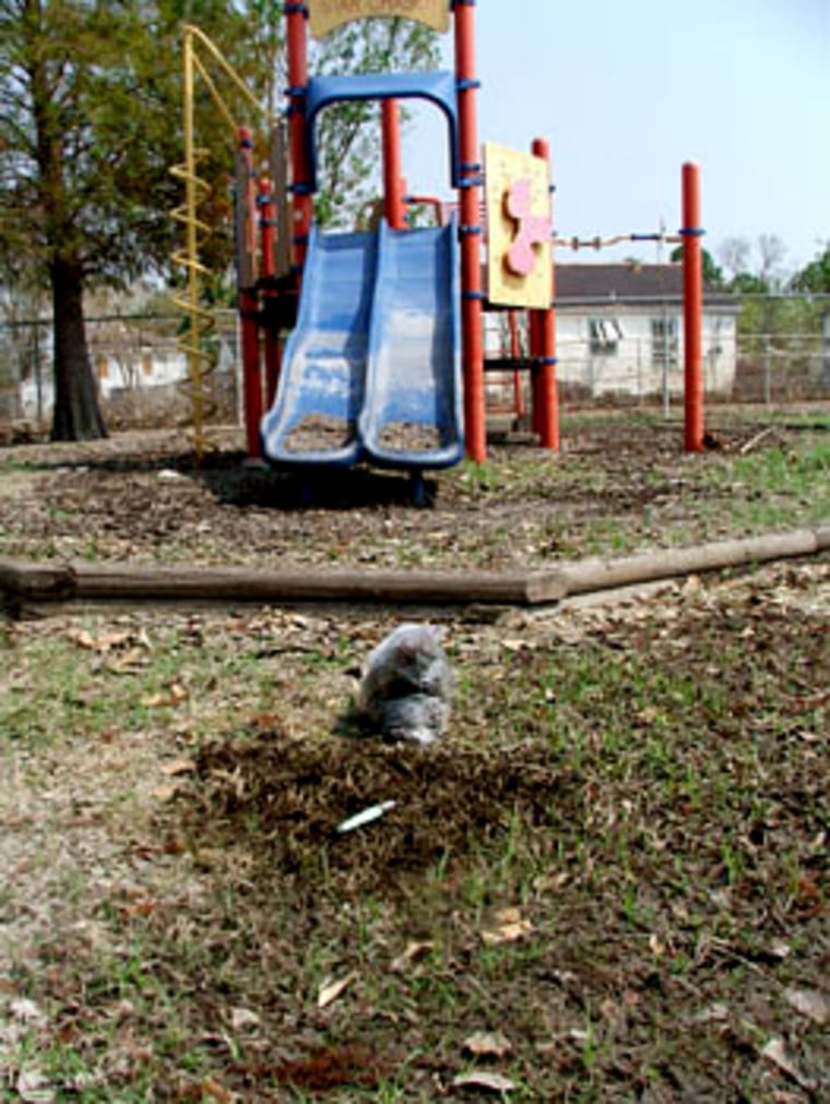 Heavy metals were found in this playground at an elementary school in Chalmette, La., according to testing funded by activist groups.