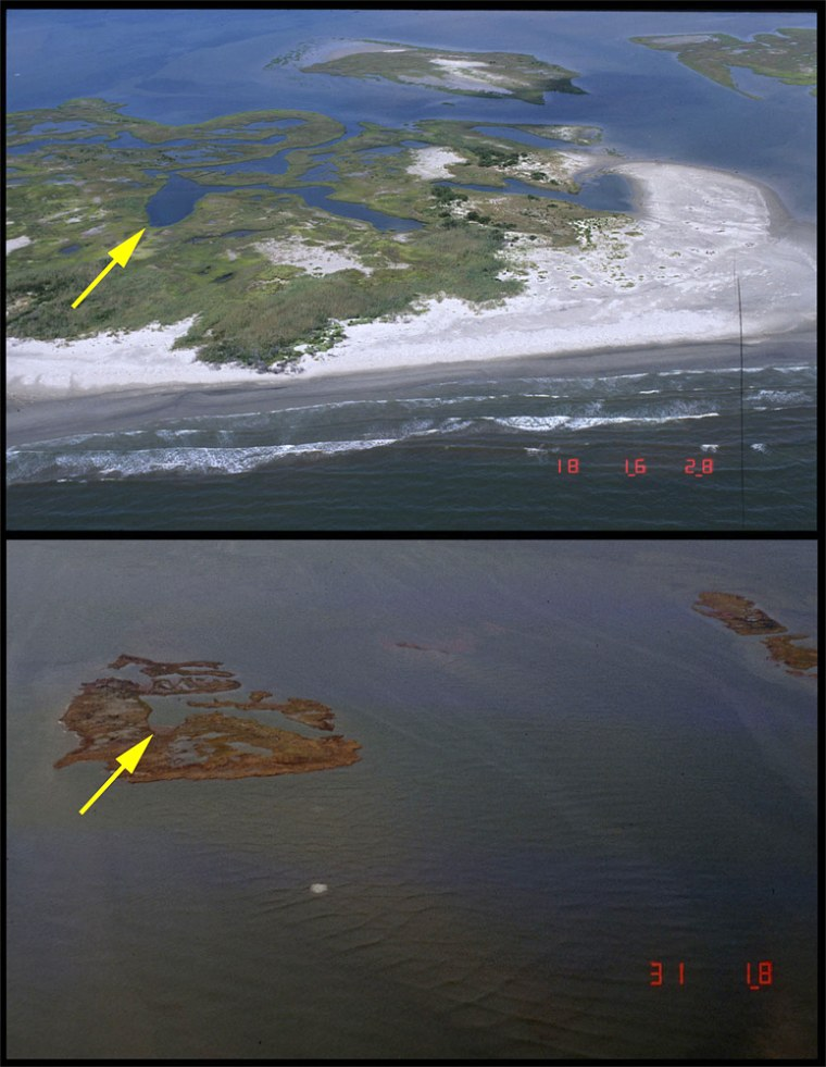Louisiana's marshlands include natural barriers like theChandeleur Islands. These images show part of the Chandeleurs in 2001 and then two days after Hurricane Katrina hit, eroding half of the barrier system.