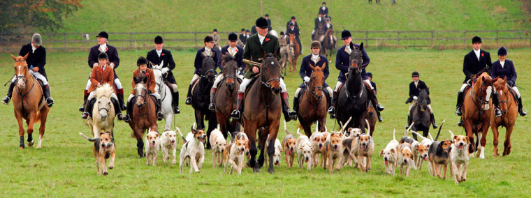 Members of the Beaufort Hunt ride out on