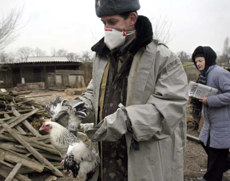 An Ukrainian Emergency Ministry worker takes domestic fowl away from a farm in the village of Dmitrovka some 500 miles south of the capital Kiev on Dec. 12.
