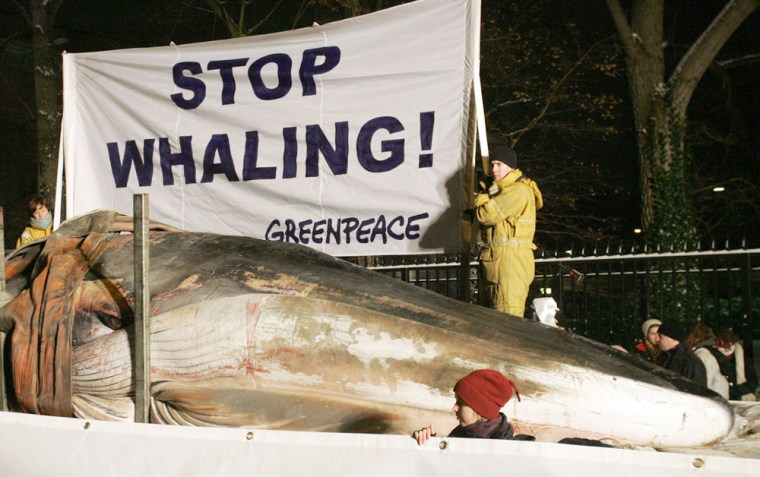 Greenpeace activists display a dead 17-m