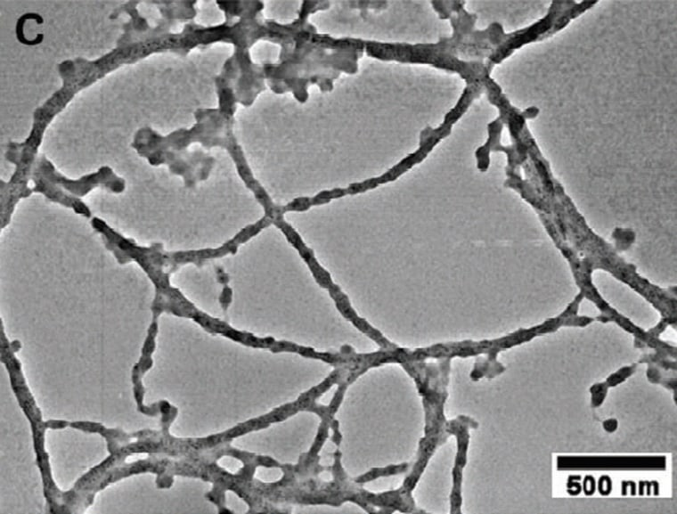 An image made using a transmission electron microscope shows hybrid cobalt oxide nanowires with gold particles,assembled by M13 viruses. The scale bar represents a length of 500 nanometers.