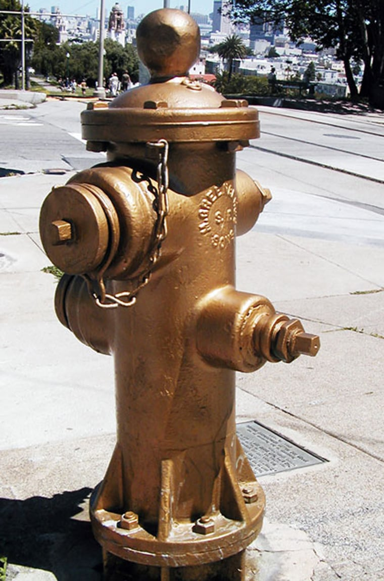 San Francisco repaints this golden fire hydrant every year on the anniversary of the 1906 earthquake. Legend has it that the hydrant, near Mission Dolores Park, miraculously delivered water when almost all others were useless, saving a large part of the city.