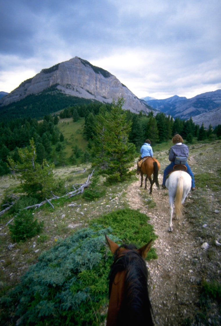 Horse Riders on Pine Butte Swamp Trail