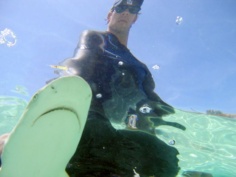 Grant Johnson of SharkDefense, a company that develops shark repellants, poses with a juvenilelemon shark in theBahamas.Michael Herrmann, a partner in the company,came up with the idea of usingmagnets on fishing hooks tosafe sharks from accidental catches.