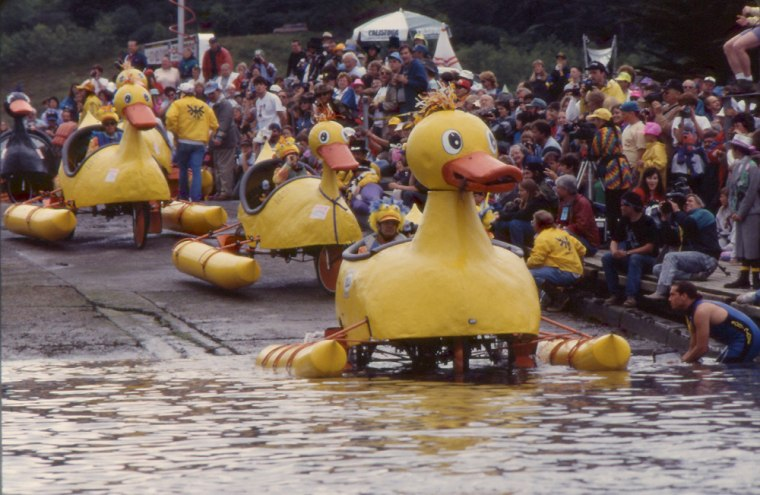It's sink or swim time as giant rubber duckie sculptures plunge into California's Humboldt Bay as part of the Kinetic Sculpture Race, which follows a 38-mile course from Arcata to Ferndale over Memorial Day Weekend.